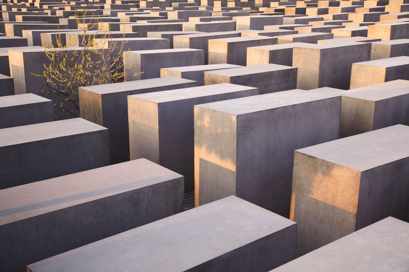 Memorial to the Murdered Jews of Europe, Berlin, Germany, No. IV